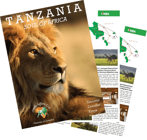 Simba Safari Brochure